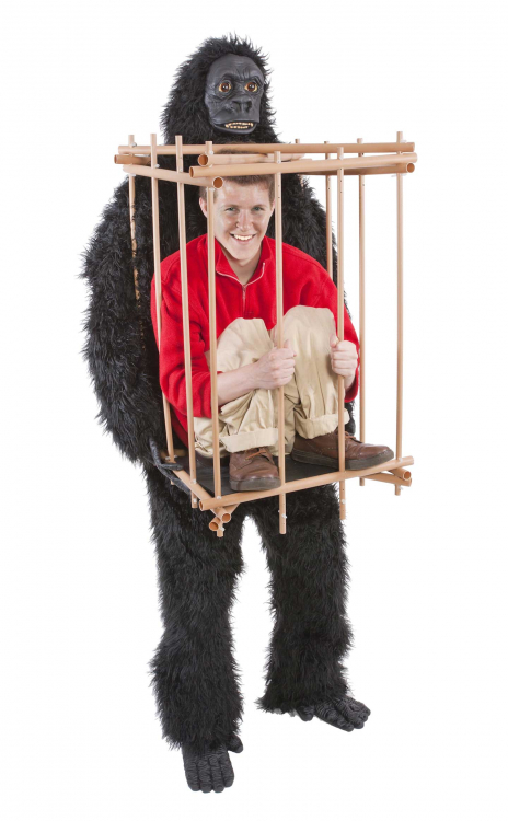 Gorilla Cages a Monkey