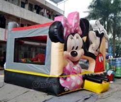 Mickey & Minnie Playland