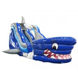Shark Tank Wet/ Dry Slide